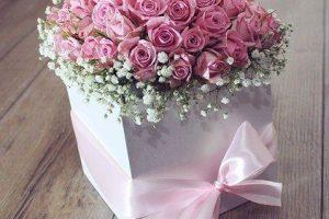 flower-3215149_640